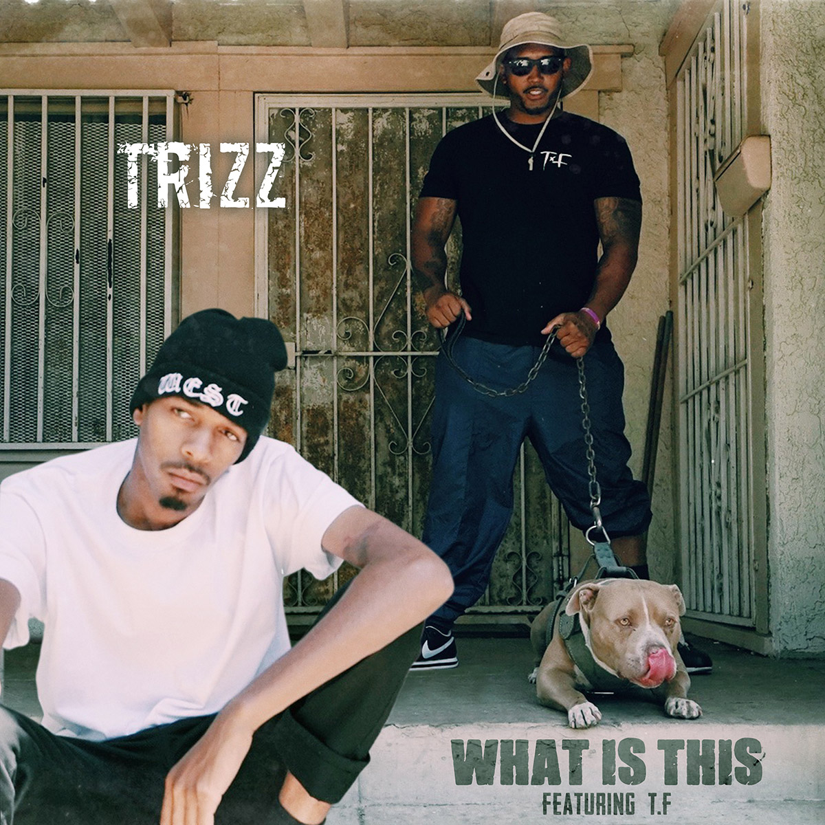 Trizz - What Is This